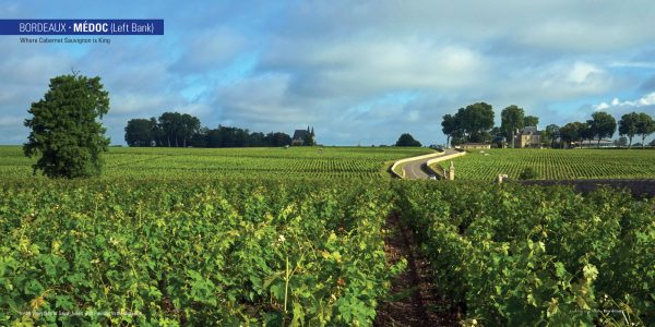 4a-Medoc-Opening